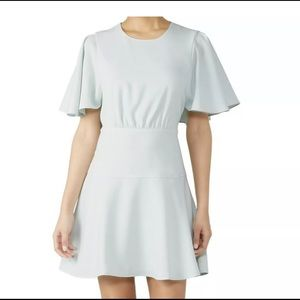 Club Monaco NWT Ceithan Dress  Sleeve 00 mint XS